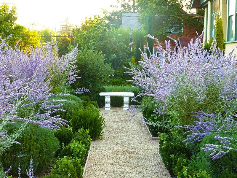 007-gallery-1-nf-morning-garden-meander