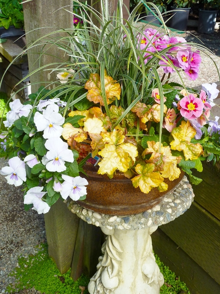 016-gallery-2-vase-in-front-yard-flowers-angle-meander